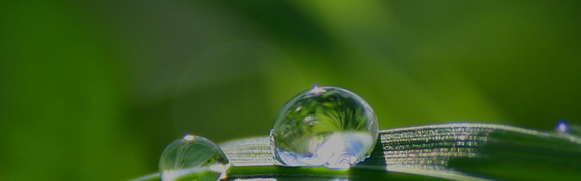 Eco-Friendly Slide
